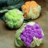Цвітна капуста - корисні властивості