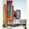 Дитячий центр онкології гематології та імунології