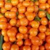 Використання мандаринів як косметичного засобу