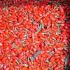 Як правильно приймати ягоди годжі?