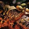 Какао порошок, боби, масло: яка користь і шкоду від них