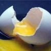 Курячі яйця: користь і шкода