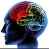 Лікування спадкових захворювань нервової системи