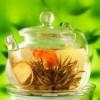 Лікування печінки, підшлункової залози, полікістозу яєчників, виразки народними засобами травами