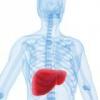 Лікування запалення печінки народними засобами