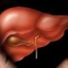Народні засоби лікування печінки і жовчного міхура