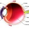 Про офтальмології