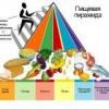 Піраміда здорового харчування для будь-якого віку