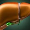 Причини підвищеного білірубіну в крові