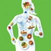 Раціональне харчування і здоров'я людини. Продукти раціонального харчування