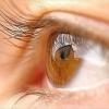 Дитина почала часто моргати очима. Що це може бути?
