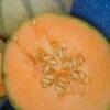 Насіння гарбуза: користь і шкода