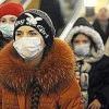 Симптоми грипу у дорослих - свинячого грипу, пташиного грипу