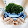 Скільки треба пити води в день? Скільки пити води, щоб схуднути?