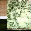 Сир з пліснявою: користь і шкода, протипоказання