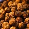 Вчені вважають волоські горіхи найкориснішими в світі