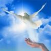 Возрождение души: поиск истинного пути