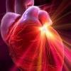 Вроджені вади серця тріади тетради пентади