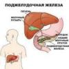 Захворювання підшлункової залози - панкреатит