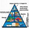 Здоров'я і здорове харчування, значення харчування для здоров'я людини
