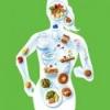 Значення раціонального харчування для здоров'я людини